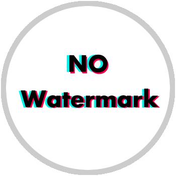 no watermark tiktok logo style